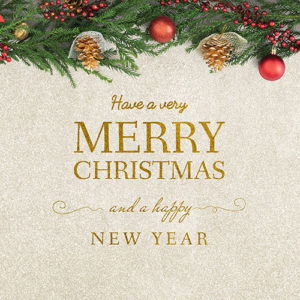 Christmas Carpet Cleaning.Bigstock Merry Christmas And Happy New 300 300 Dorundo S